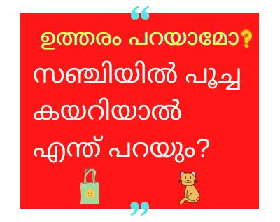 sanchiyil poocha answer